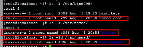 使用BIND自建DNS服务,实现双DNS服务器主从复制、子域授权、转发、智能解析等效果