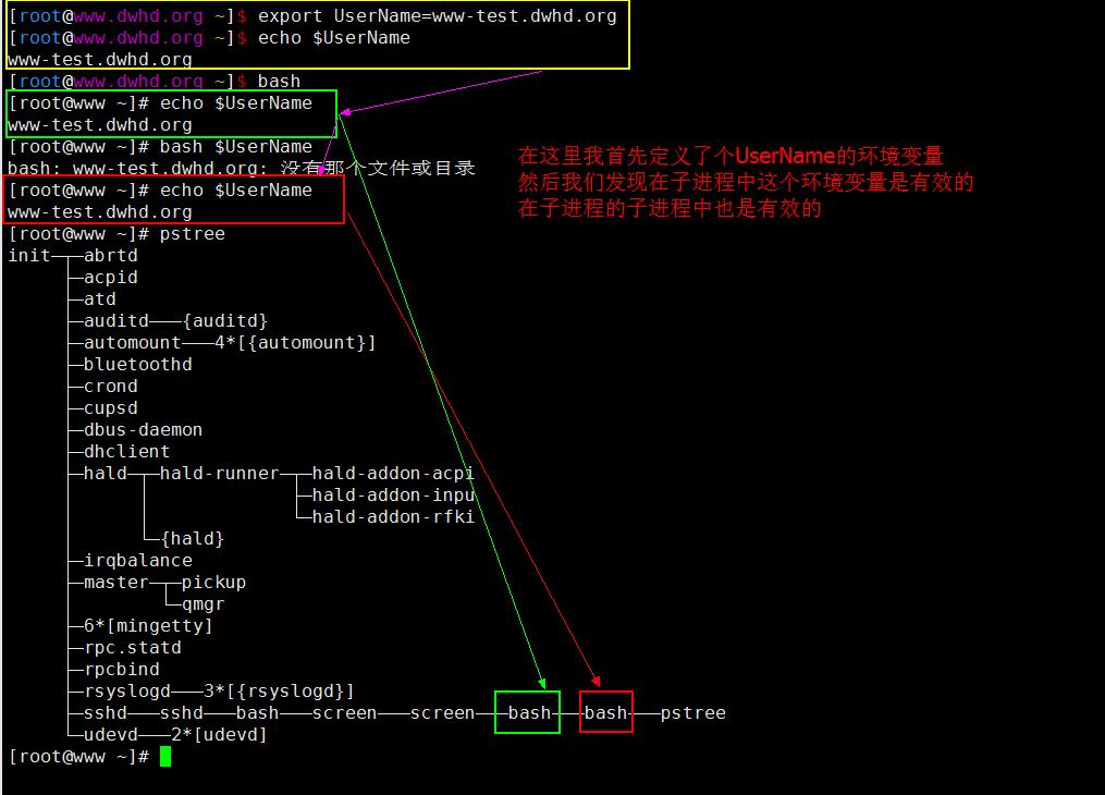 Linux基础入门之BASH特性及用法