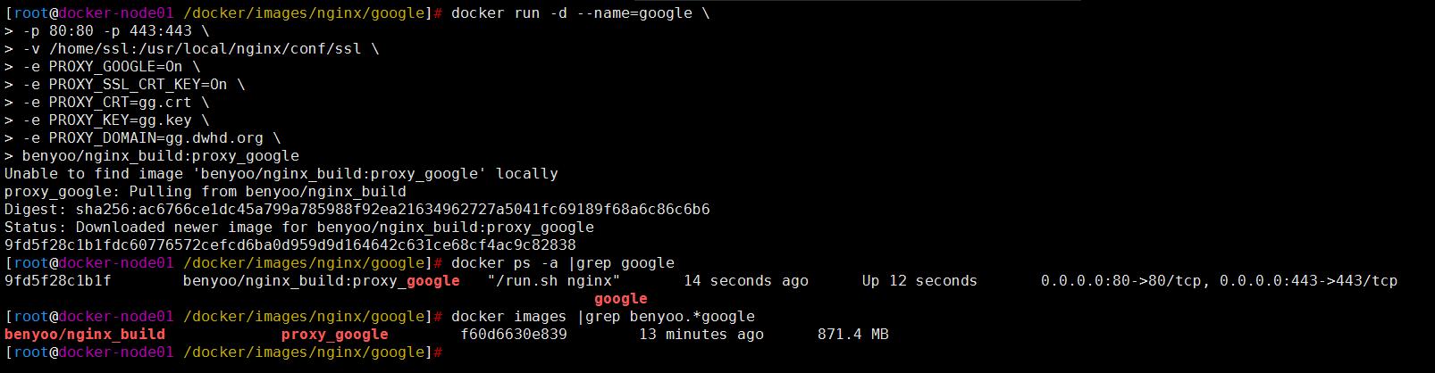 Docker之构建Nginx镜像实现迅速搭建Google反代站点
